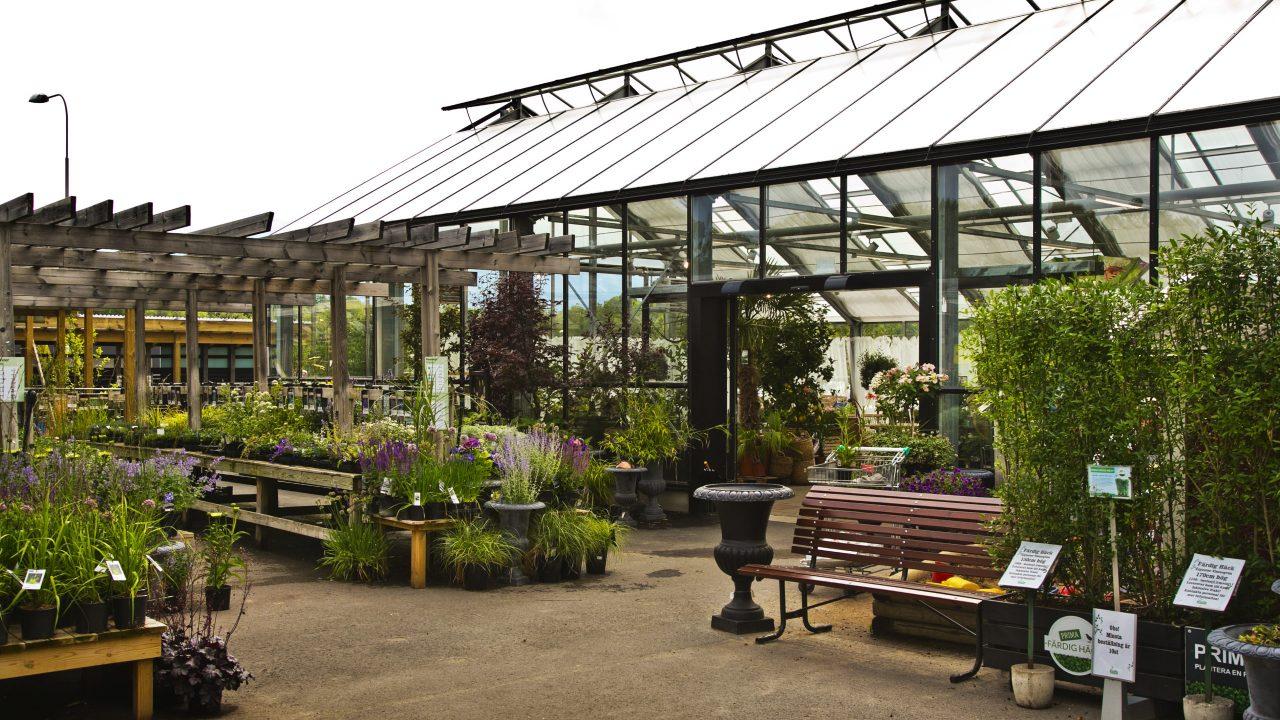 Blomstertorget Miljö trädgård (4)