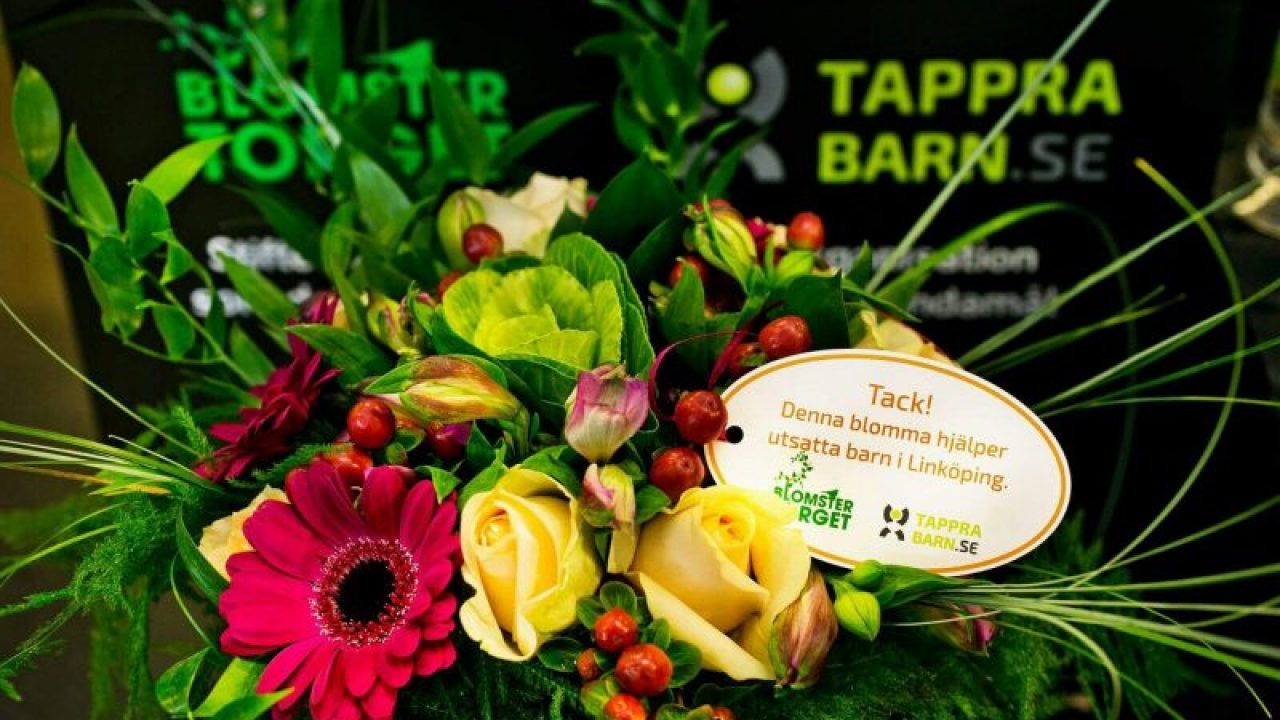 tappra-barn-1-e1504460492283